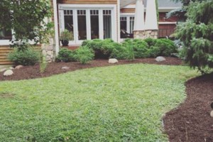 Photo #5: Platinum lawn and landscape