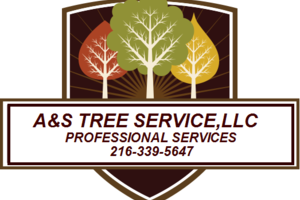 Photo #1: A&S TREE SERVICE, LLC