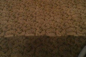 Photo #2: Complete Carpet Cleaning LLC