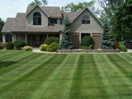 Photo #1: Ramirez landscaping