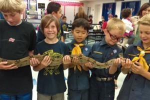 Photo #4: Kreepy Kreatures Reptile Shows