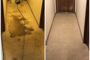 Photo #2: Quality Carpet and Tile Cleaning