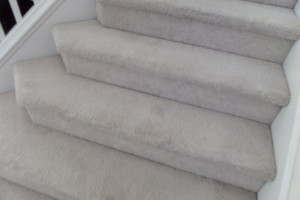 Photo #4: Clean America Carpet Cleaning & Janitorial Services
