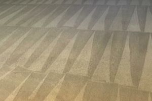 Photo #1: K&A Carpet Cleaning