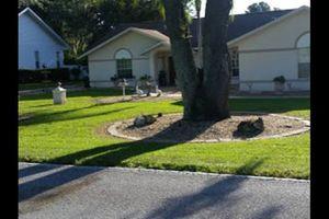 Photo #4: JDB'S Quality Lawn Service