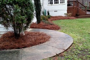 Photo #4: AB- LANDSCAPING