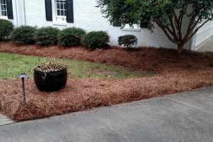 Photo #5: AB- LANDSCAPING