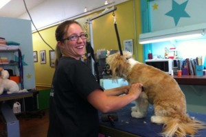 Photo #3: Star Grooming on Fifth