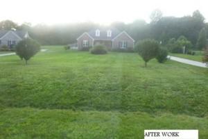 Photo #2: A&C Lawn Service