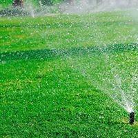 Photo #1: Abundant Lawn Care