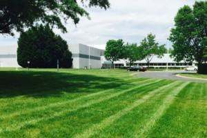 Photo #3: Abundant Lawn Care