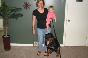 Photo #6: Aztec Dog Training and Puppy Bootcamp