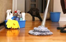 Photo #2: Miley Cleaning Services