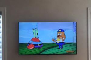 Photo #1: ELP Tv Install