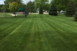 Photo #1: Southern Minnesota lawn care