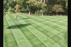 Photo #2: Southern Minnesota lawn care