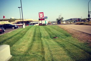 Photo #3: Southern Minnesota lawn care