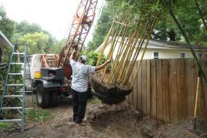 Photo #1: The Tree Planters LLC