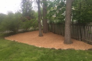 Photo #2: Ty's Total Lawn Care