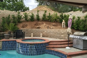 Photo #5: Aguilera's Lawn care & Irrigation