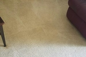 Photo #2: Shalom Carpet cleaning