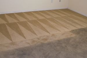 Photo #3: Shalom Carpet cleaning