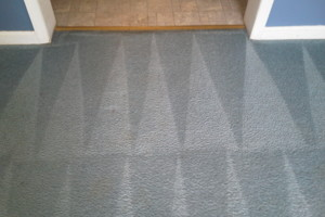 Photo #6: Blue Rooster Carpet Cleaning