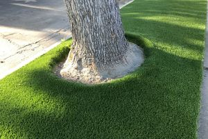 Photo #6: Tough Turf