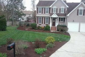 Photo #1: Botanical Landscape Management LLC