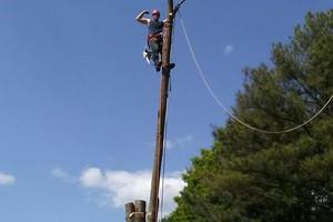 Photo #2: Arbor Country Tree Service