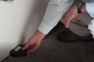Photo #2: Cooper Pest Solutions