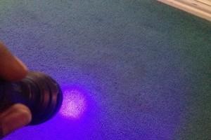 Photo #5: Healthienvironments Carpet Cleaning & Restoration