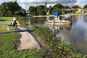 Photo #1: Sox Erosion Solutions