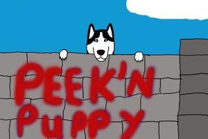 Photo #1: Peek'n Puppy Dog Training