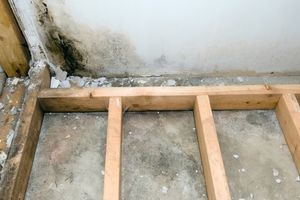 Photo #2: My Long Island Mold Removal