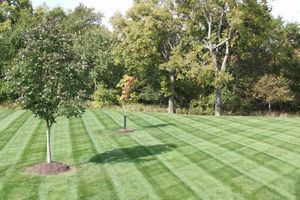 Photo #1: Prestige Lawn Mowing