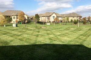 Photo #2: Prestige Lawn Mowing