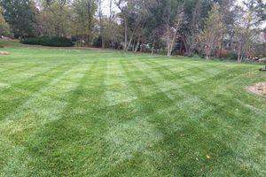 Photo #4: Prestige Lawn Mowing