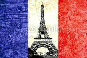Photo #1: French Tutor for all types and levels(All NY)
