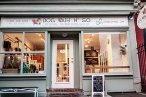 Photo #1: Self Dog Wash and Grooming Salon