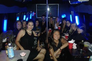 Photo #1: PARTY BUS FOR 20 PARTYGOERS