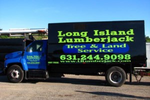 Photo #1: Tree And Land Clearing Services From Soup To Nuts