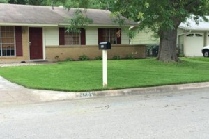 Photo #1: NEED MOWING???