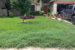 Photo #1: Landscape Services & Lawn Maintenance