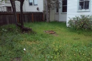 Photo #1: AFFORDABLE YARD CLEANUP