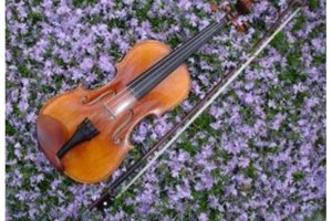 Photo #1: BROOKLINE VIOLIN LESSONS