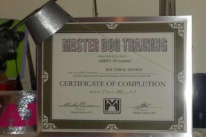 Photo #1: MASTER DOG TRAINING - Obedience, Potty, and Behavior Modification $60