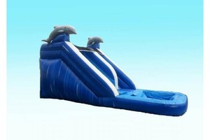 Photo #1: Bounce House Rentals!! 150-250$
