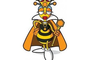 Photo #1: Pest control /Exterminating / Bedbugs