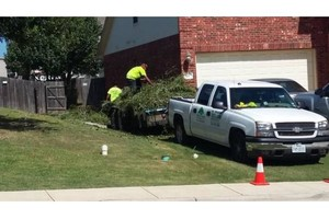 "Photo #1: *ALL SEASONS* ""TREE"" AND ""LAWN"" SERVICES...(15YRS.EXP)"